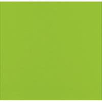 2-laags limoen groen micropoint servet  380x380mm